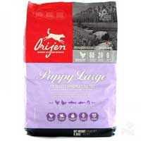 Orijen Large Breed Puppy Formula Dry Dog Food