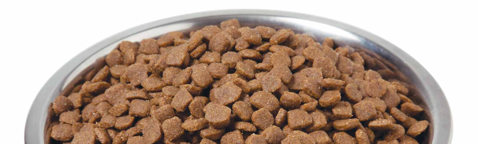 Recommended Dog Food Brands